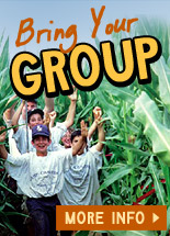 Bring your group to Farmland Adventures - Group activities, campfire, parties, and more!