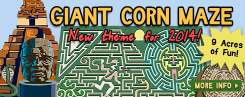 Giant Corn Maze - Northwest Arkansas